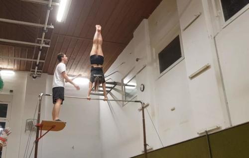 Ali Handstand Reck